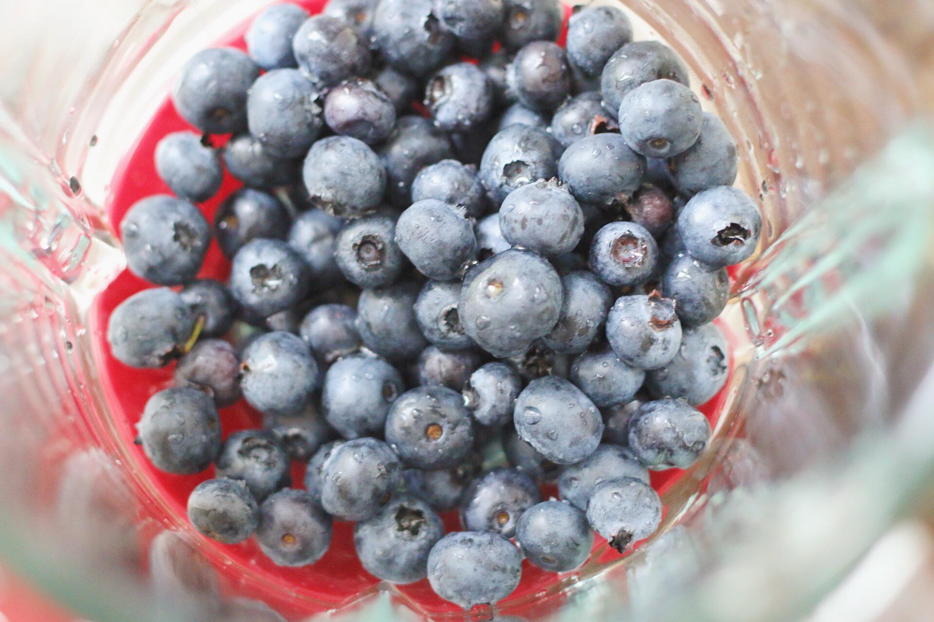 Puree blueberry. Add final layer after yogurt has frozen.